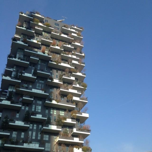 Milano pennaevaligia bosco verticale 03