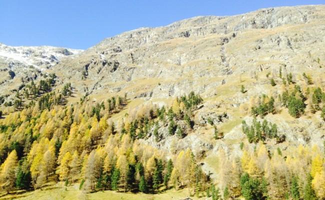 Svizzera Engadina Roseg sentieri 6