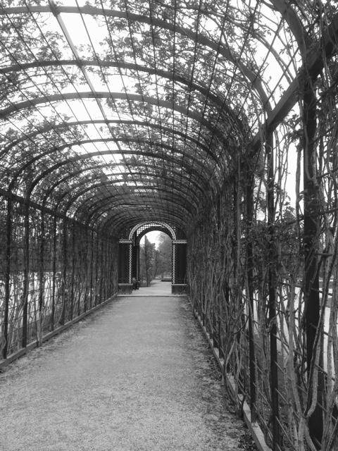 Vienna bn schonbrunn giardino