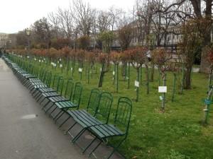 Vienna volksgarden 2