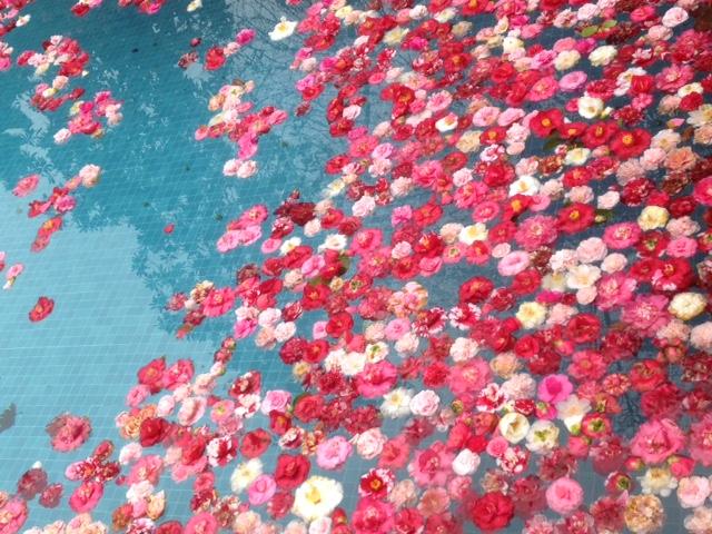 Un soffio di primavera 01